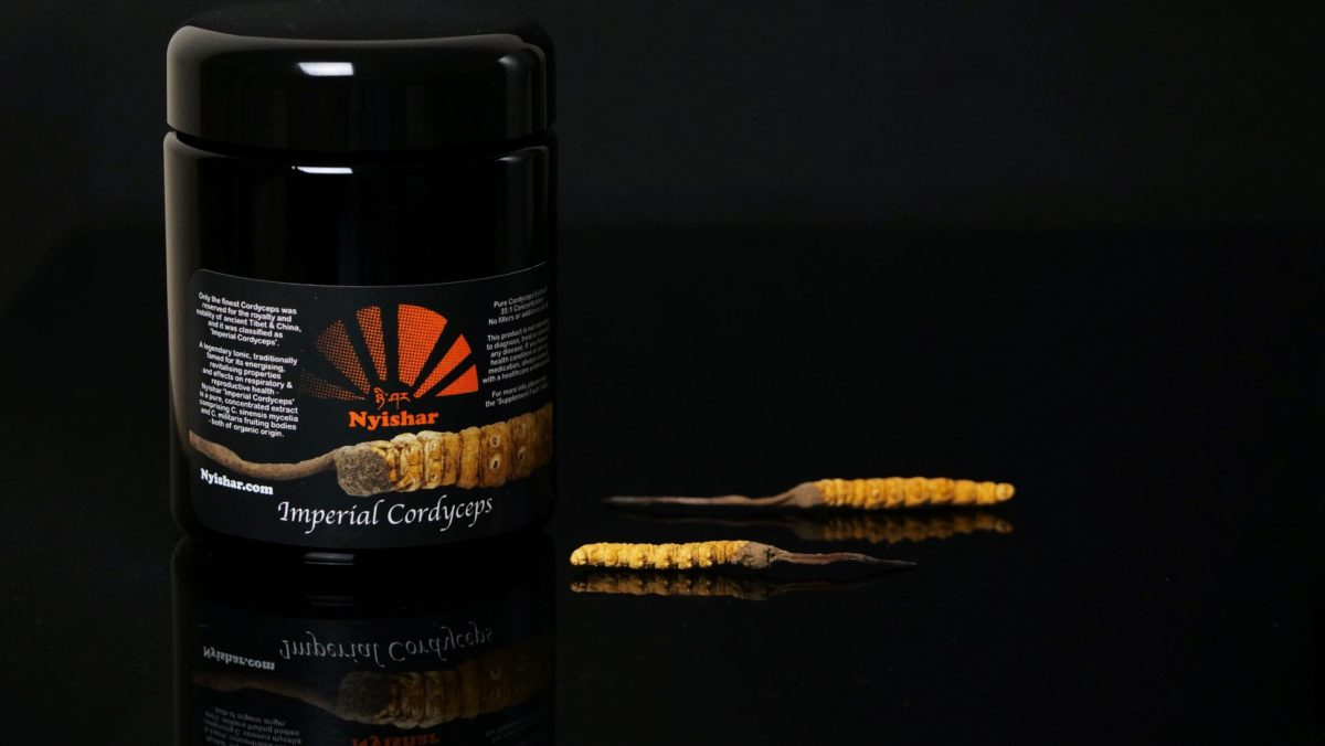 Nyishar Imperial Cordyceps capsules